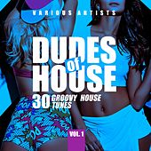Dudes of House (30 Groovy House Tunes), Vol. 1 by Various Artists