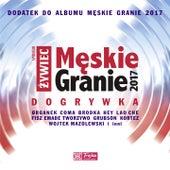 Męskie Granie 2017 Dogrywka de Various Artists