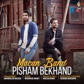Pisham Bekhand by Macan Band