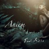Aniem by Paul Sills