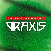 Praxis by In the Nursery