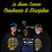 Constancia & Disciplina by La Misma Esencia