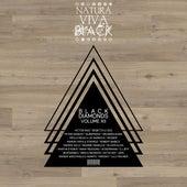 Black Diamonds, Vol. 12 by Various Artists