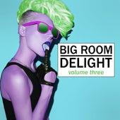 Big Room Delight, Vol. 3 von Various Artists