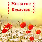Music for Relaxing and Sleep Well the Day Before Wedding de Thunderstorm Sleep