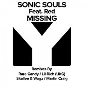 Missing by Sonic Souls