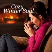 Cozy Winter Soul von Various Artists