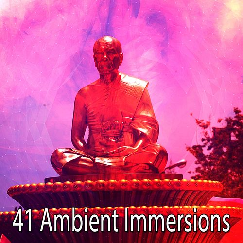 41 Ambient Immersions by Music For Meditation