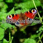 65 Peacefully Sound White Noises de Meditación Música Ambiente