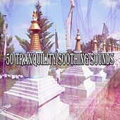 50 Tranquility Soothing Sounds de Zen Meditation and Natural White Noise and New Age Deep Massage