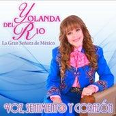 Voz, Sentimiento Y Corazon... by Yolanda Del Rio