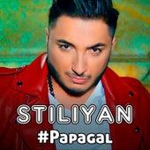#Papagal by Stiliyan
