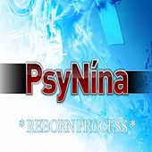 Reborn Process by Psynina