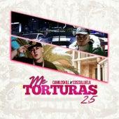 Me Torturas 2.5 de Camiloskill