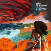 An Angel Fell by Idris Ackamoor
