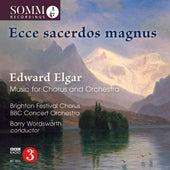 Ecce sacerdos magnus by Brighton Festival Chorus