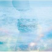 Flowering de TK from Ling tosite sigure