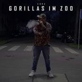 Gorillas im Zoo by Eska