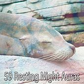 59 Resting Night Auras by Lullaby Land