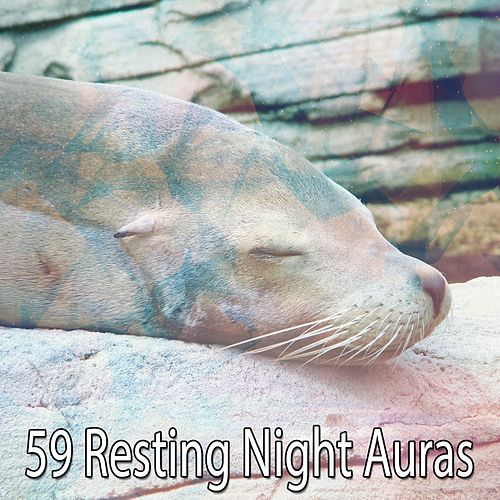 59 Resting Night Auras de Lullaby Land