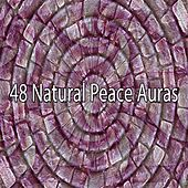 48 Natural Peace Auras by Bedtime Baby