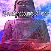 53 Ambient Sounds Of Peace von Entspannungsmusik