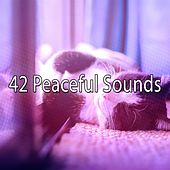 42 Peaceful Sounds by Ocean Sounds Collection (1)