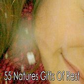 55 Natures Gifts Of Rest by Ocean Sounds Collection (1)