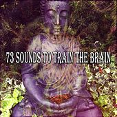73 Sounds To Train The Brain von Lullabies for Deep Meditation