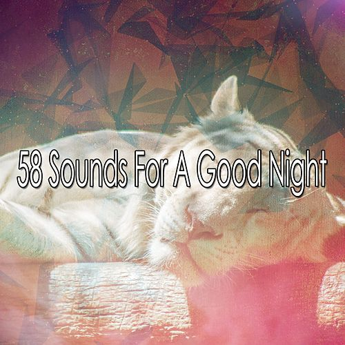 58 Sounds For A Good Night von Lullaby Land