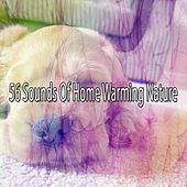 56 Sounds Of Home Warming Nature by Nature Sound Series
