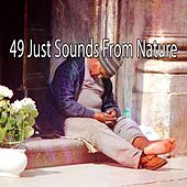 49 Just Sounds From Nature von Best Relaxing SPA Music