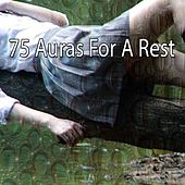 75 Auras For A Rest by Bedtime Baby