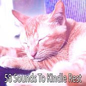 58 Sounds To Kindle Rest by Deep Sleep Music Academy
