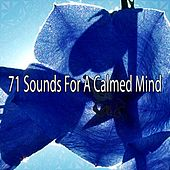 71 Sounds For A Calmed Mind by Ocean Sounds Collection (1)