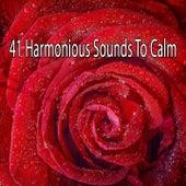 41 Harmonious Sounds To Calm von Entspannungsmusik