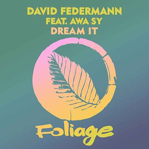 Dream It by David Federmann