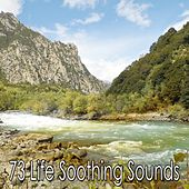 73 Life Soothing Sounds von Massage Therapy Music