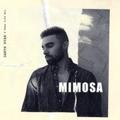 Mimosa (feat. Rexx Life Raj) by Dante Ryan