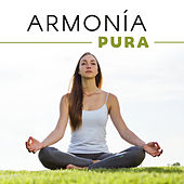 Armonía Pura by Meditation Awareness
