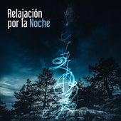 Relajación por la Noche by Relaxing Piano Music