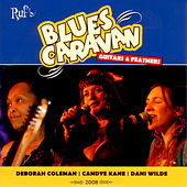 Blues Caravan 2008 - Guitars & Feathers by Various Artists