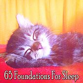 65 Foundations For Sleep de White Noise Babies