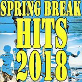 Spring Break Hits 2018 von Various Artists