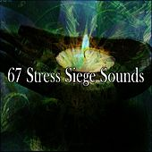67 Stress Siege Sounds de Massage Tribe
