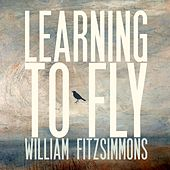 Learning to Fly by William Fitzsimmons