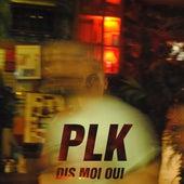 Dis-moi oui - Single de PLK