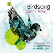 Birdsong by Gwilym Simcock