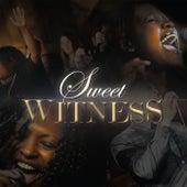 Sweet Witness de Sweet Witness