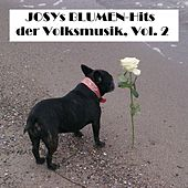 Josys BLUMEN-Hits der Volksmusik, Vol. 2 van Various Artists